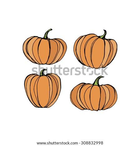 Set of different pumpkins,harvest illustration isolated on white background