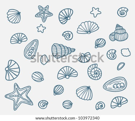 Set of different sea shells outlines - stock vector