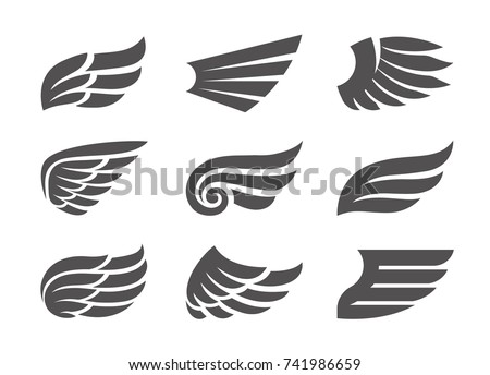 set different vector wings isolated on stock vector 741986659 rh shutterstock com wind vector input wind vectors in el