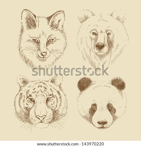 Set of different wild animals - stock vector