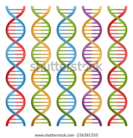 Set of DNA symbols for science and medicine. Vector design. - stock vector