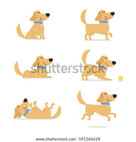 golden retriever stock images royaltyfree images