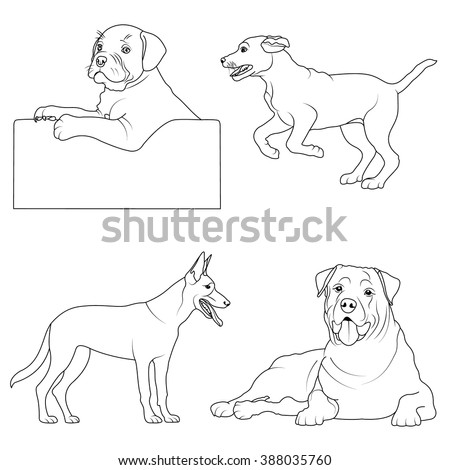 set of 4 dogs coloring page black and white dog illustration