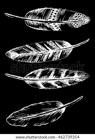 Set of doodle feathers.