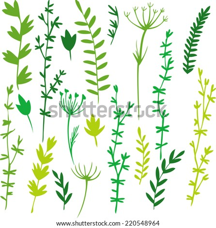 set of doodle leaves and grass, hand drawn vector illustration - stock vector