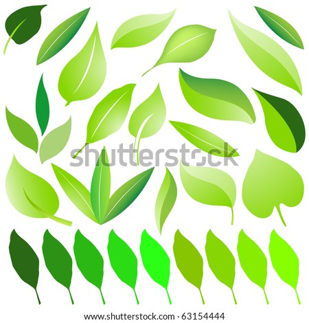Set of eco green leaf design vector - stock vector