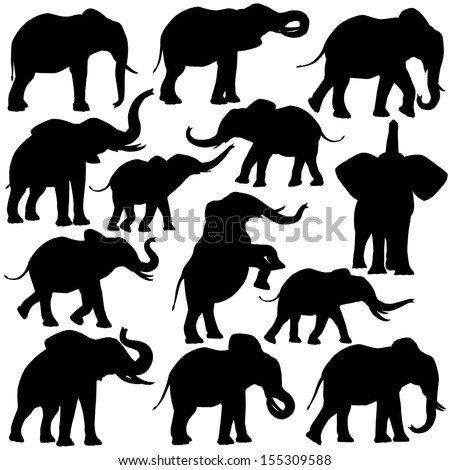 Set of editable vector silhouettes of African elephants in various poses - stock vector