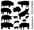 Set of editable vector silhouettes of pigs and piglets - stock photo