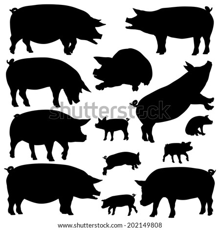 Set of editable vector silhouettes of pigs and piglets - stock vector