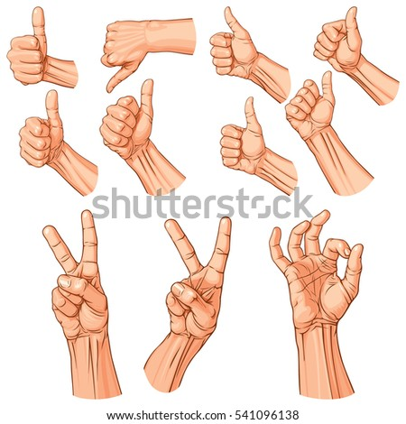 Set of eleven hands with thumb finger up, OK and victory gestures. Vector illustration (EPS v.8.0)