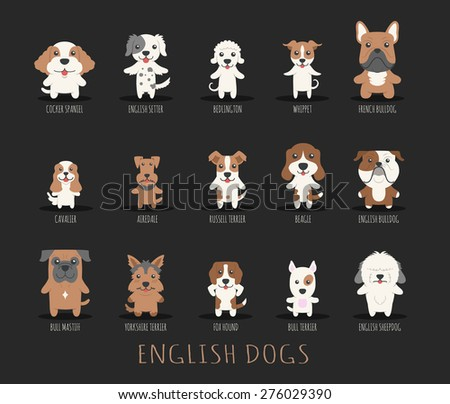 Set of english dogs , eps10 vector format - stock vector