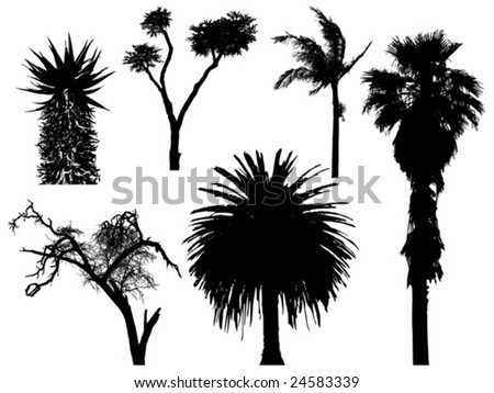 set of exotic trees - stock vector