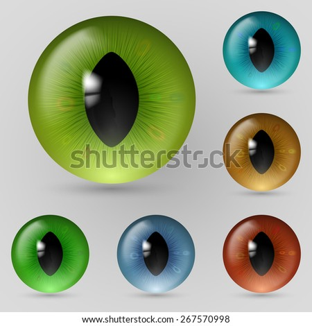 Set of eyes reptiles, cats and dragon - stock vector