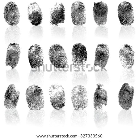 Set of fingerprints, vector illustration isolated on white - stock vector