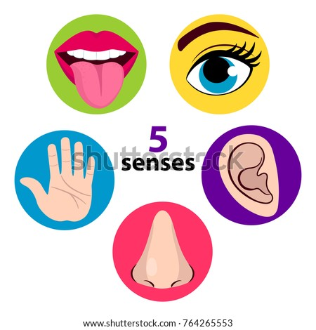 set five human senses vision eye stock vector royalty free rh shutterstock com Drawings of Eyes and Lips Red Lips