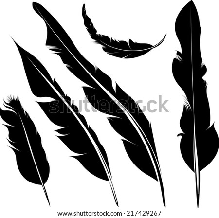 Set of five vector silhouette of feathers