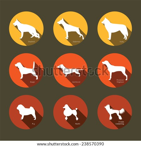 Set of flat icons with dogs silhouettes. Hunting dogs, service dogs, toy dogs. Design elements for web and mobile applications  - stock vector
