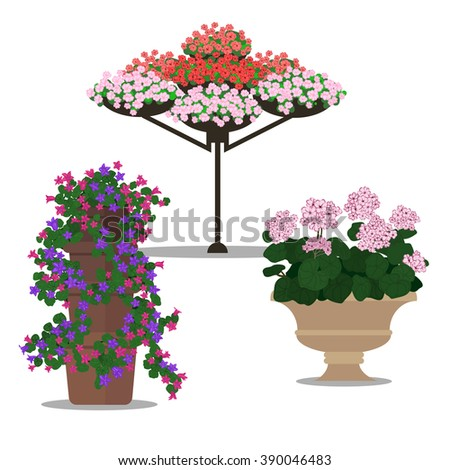 Set of floral arrangement. Garden landscapes, summer and spring flower bed. Vector flat illustrations