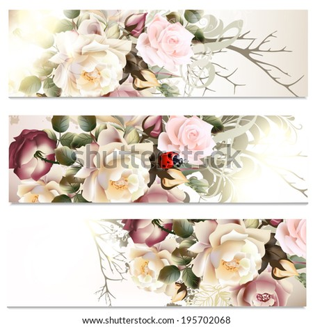 Set of floral brochures with   roses flowers for design - stock vector