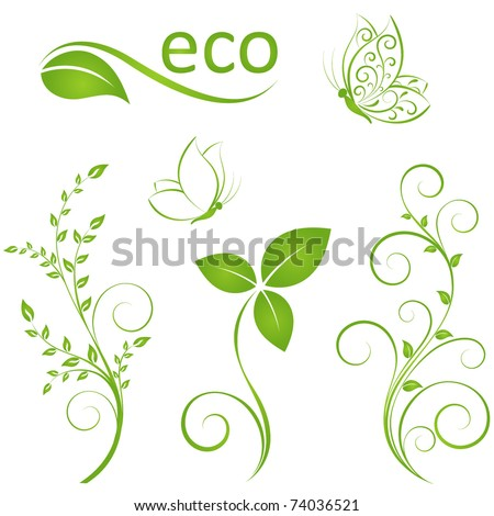 Set of floral elements for design - stock vector