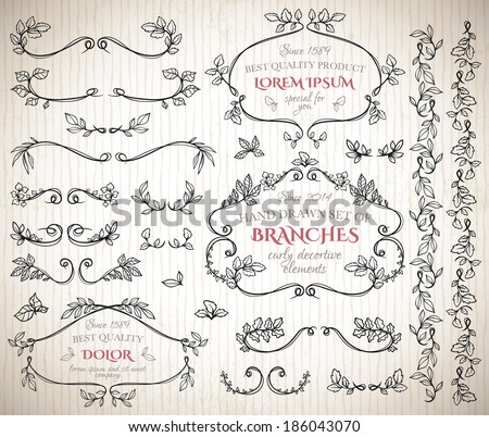 Set of floral vintage hand drawn vignettes - stock vector