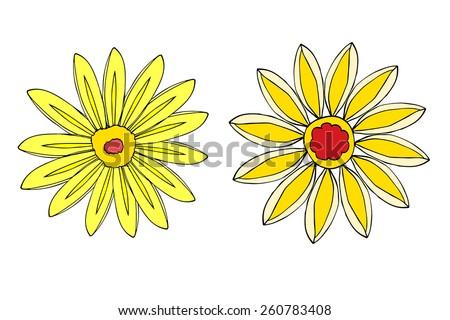 Set of Flower isolated. Vector illustration - stock vector