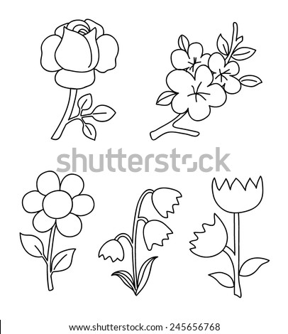 Set of flowers - stock vector