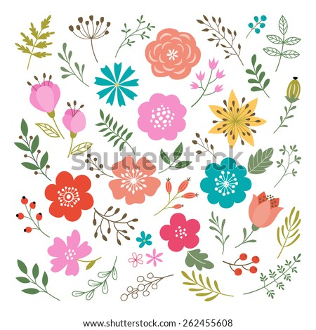 Set of flowers and floral elements isolated on white background. - stock vector