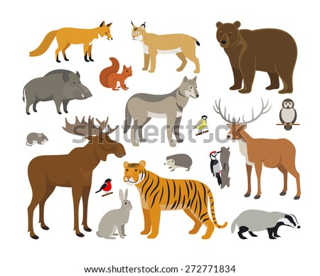 Set of Forest Animals - stock vector