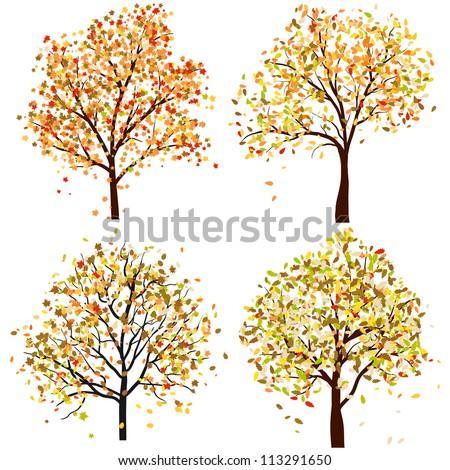 Set of four autumn tree. Vector illustration. - stock vector