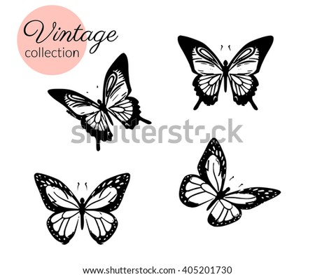 Set of four black and white butterflies silhouette with open wings isolated. - stock vector