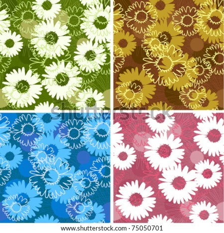 Set of four floral seamless patterns with daisies/camomiles