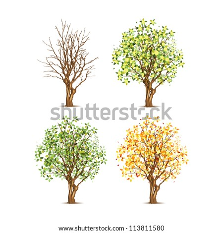 Set of four trees in different seasons, vector illustration, eps10, transparent shadow. - stock vector