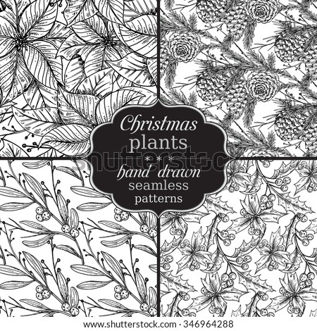 Set of four Vector seamless patterns with hand drawn winter plants - poinsettia, mistletoe, fir-cone; holly.Christmas and New Year sketch background. Can be used for  textile, paper, scrapbook. - stock vector