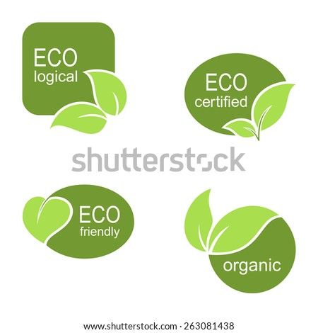 Set of frames and labels with green leaves for ecological, organic or natural theme design - stock vector