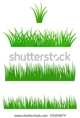 Set of fresh summer grass for Your design - stock vector
