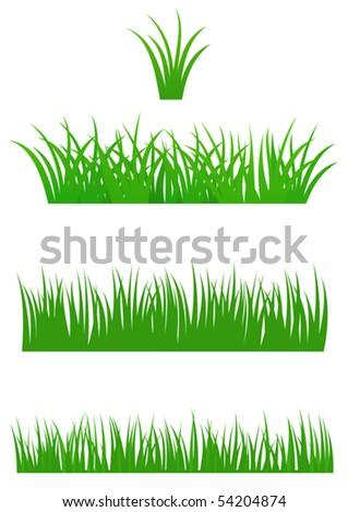 Set of fresh summer grass for Your design - stock vector
