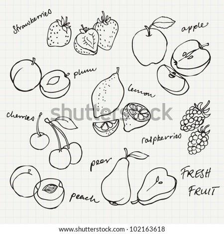 Set of Fruit doodle drawings vector - stock vector
