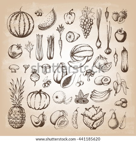 Set of fruits and collection of hand-drawn vegetables. Vector illustration. - stock vector