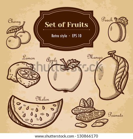 Set of fruits. For menu. Hand drawing, retro. Healthy food. Vintage style. - stock vector