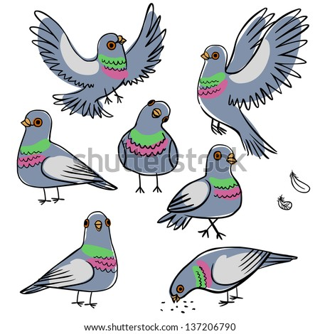 Set of funny pigeons - stock vector