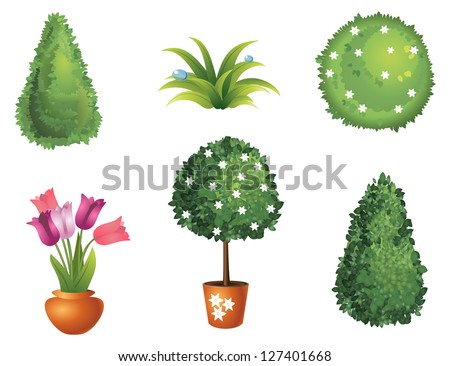 Set of garden plants with flowers and leaves - stock vector