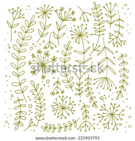 Set of grass and leaves, autumn theme. Vector herbs