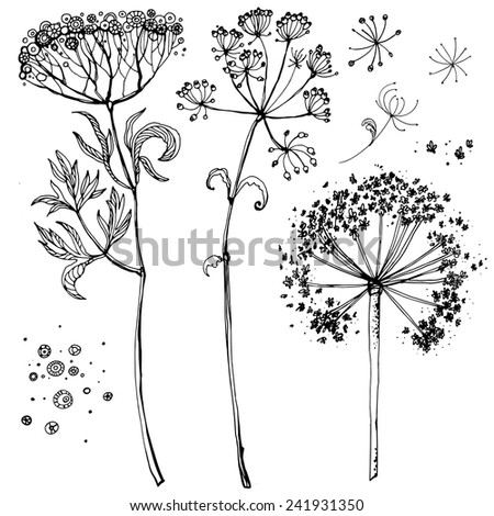 Set of grass narisovyh black line, summer grass. Verctor graphics, black line on a white background - stock vector