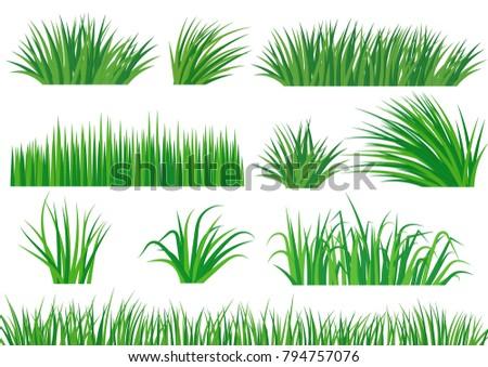 Set Green Grass Template Park Garden Stock Vector 794757076 ...