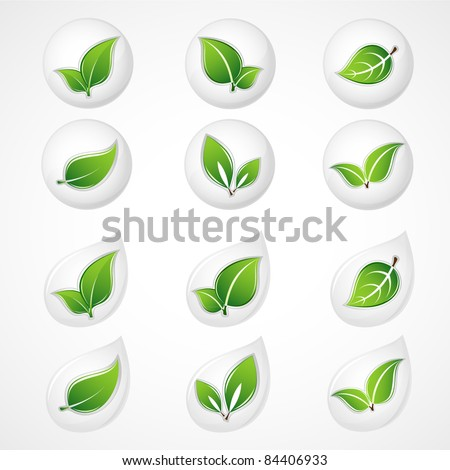 Set of green leaves. Floral element for design. - stock vector