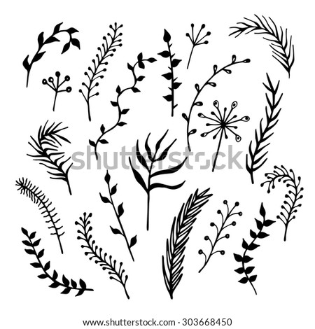 Set of hand-drawn branches black silhouettes isolated on white background. Ink vector illustration. - stock vector