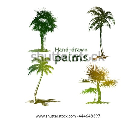 Set of hand-drawn colored palms. Tropical trees sketch design.