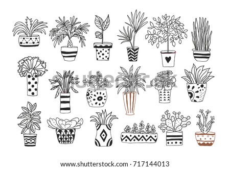 Set of hand drawn doodle plants. Outlines.
