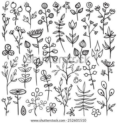 Set of 40 hand-drawn floral elements. Different flowers, leafs, berries, and other nature elements. - stock vector